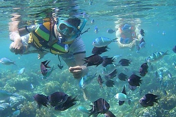 tempat snorkeling di lombok